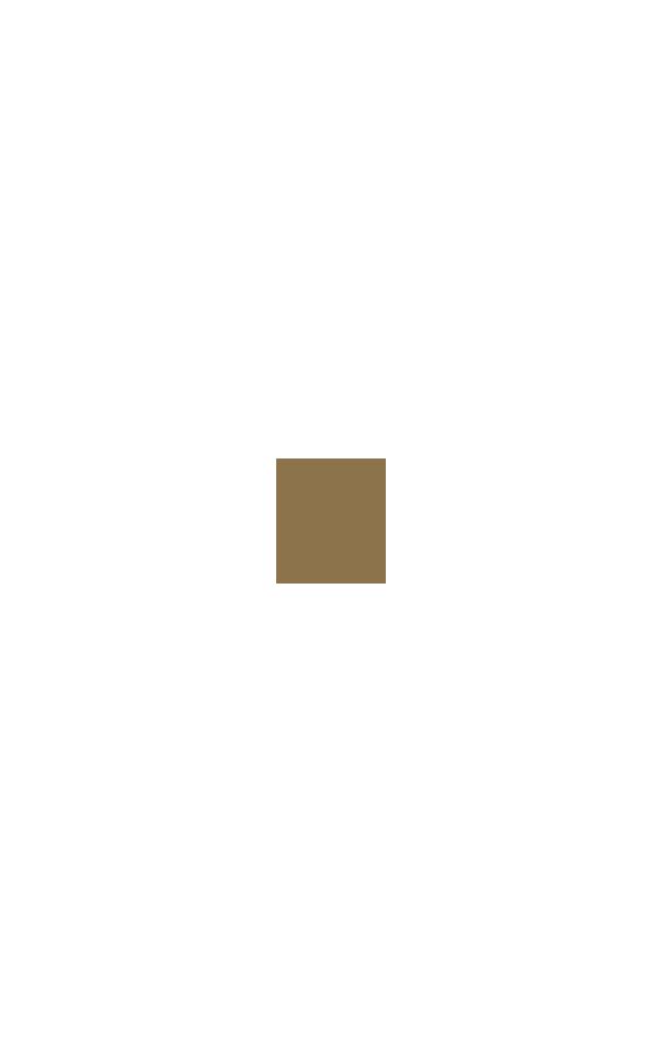 Studio IDC logo