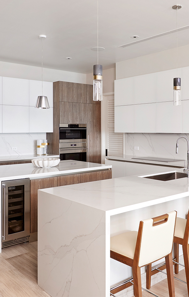 View of contemporary kitchen design
